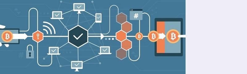 blockchain-ireland-240-breed